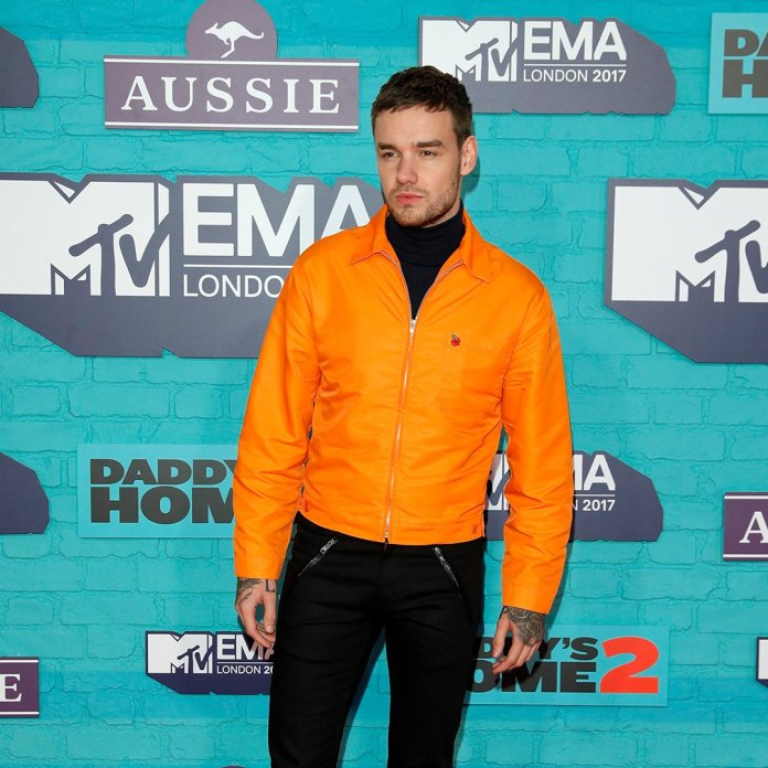 Liam Payne - MTV EMA 2017 (red carpet) (1) - Hit Channel