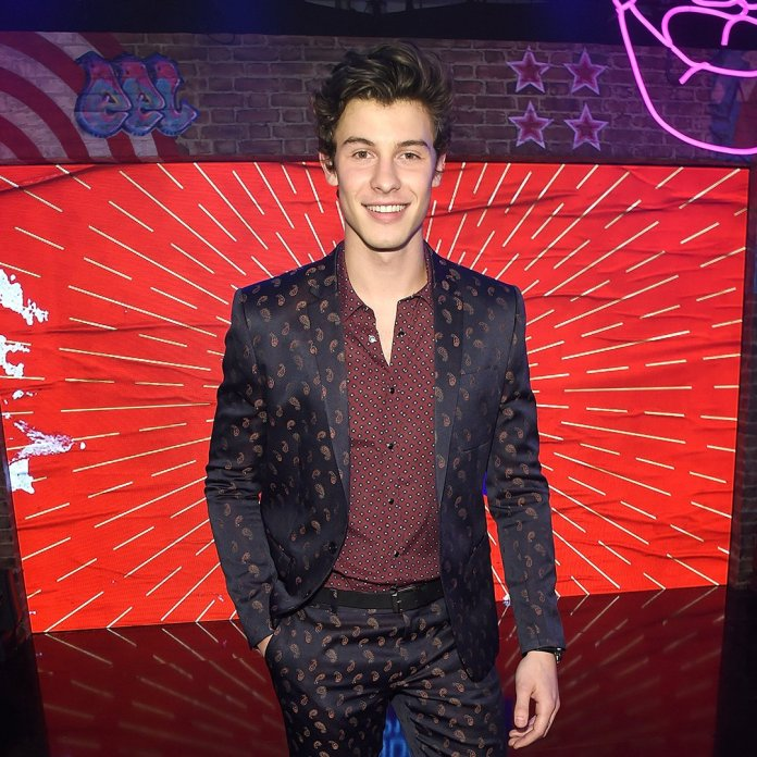 Shawn Mendes - MTV EMA 2017 (red carpet) (1) - Hit Channel