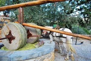 Το ελαιοτριβείο που σέρνει άλογο.